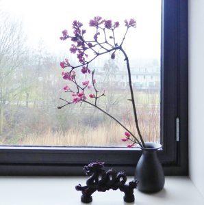 Ikebana Groningen